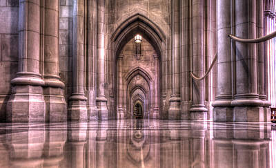 Cathedral Reflections Art Print by Shelley Neff
