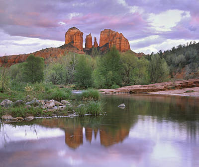 Cathedral Rock Art Print by Tim Fitzharris