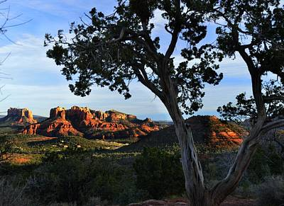 Photograph - Cathedral Rock by Walt Sterneman