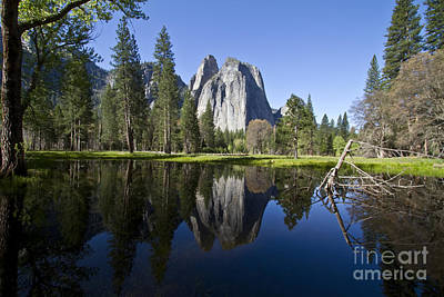 Photograph - Cathedral Rocks Reflection by Photography by Laura Lee