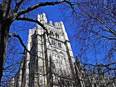 Photograph - Cathedral by Sarah Loft