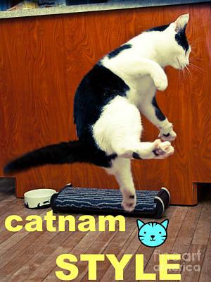 Photograph - Catnam Style by Cheryl Baxter