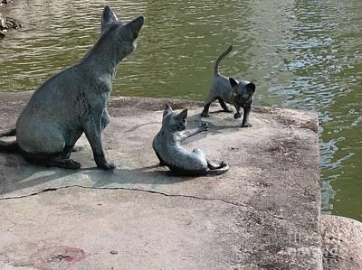 Photograph - Cats By The River by SAIGON De Manila