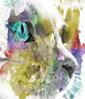 Cat's Eye Abstract Art Print