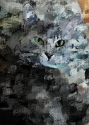 Digital Art - Cats Eye by David Lane
