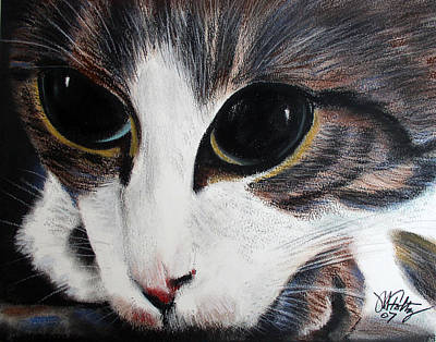 Painting - Cat's Eyes by Michael Foltz