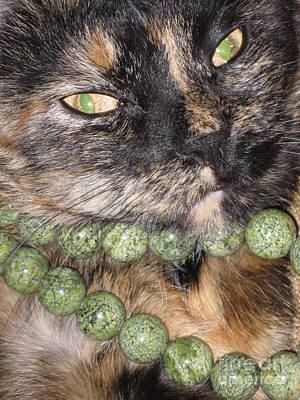 Photograph - Cat's Fashion Day by Oksana Semenchenko