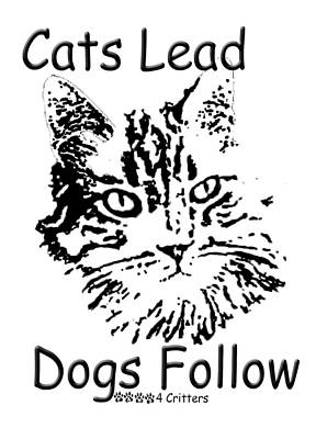 Photograph - Cats Lead Dogs Follow by Robyn Stacey