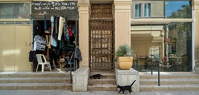 Cats On The Steps Of A Clothing Store Art Print