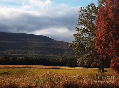 Photograph - Catskill Mountains And Farms by Ellen Levinson