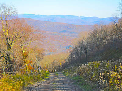 Photograph - Catskill Mtn. Dirt Road by Kathryn Barry