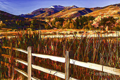 Cattails And Color-2 Art Print by Nancy Marie Ricketts