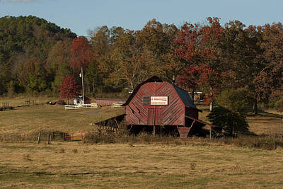 Photograph - Cattle Barn by Robert Camp