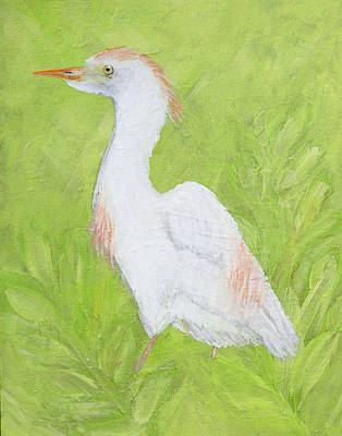 Cattle Egret Painting - Cattle Egret by Lindy Brown