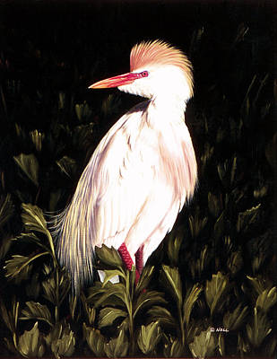 Cattle Egret Painting - Cattle Egret by Mark Noll
