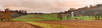 50 Cattle Grazing Photograph - Cattle Farm Paint Valley  by Randall Branham