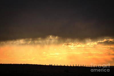 Photograph - Cattle Fence At Sunset by Kate Purdy