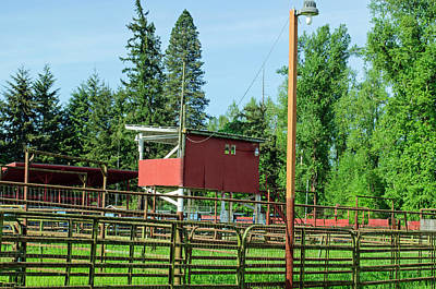 Photograph - Cattle Gates For The Rodeo by Tikvah's Hope