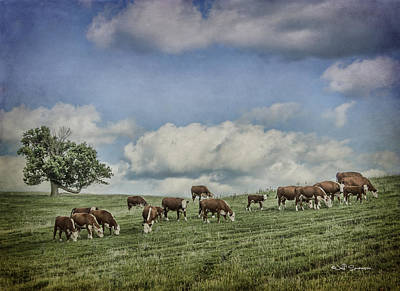 Cattle Grazing Art Print by Jeff Swanson