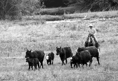 Photograph - Cattle Round Up by Athena Mckinzie