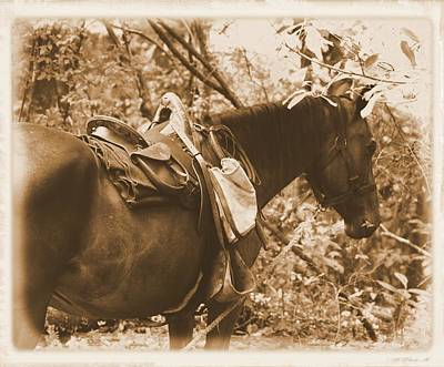 Photograph - Catttle Horse by Sheri McLeroy