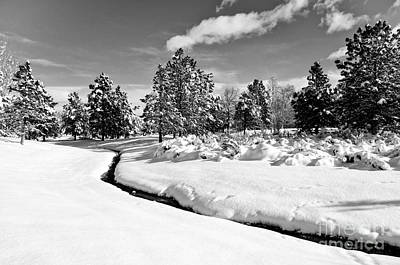 Photograph - Caughlin Creek Snowfall B/w by Vinnie Oakes
