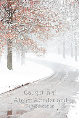 Caught In A Winter Wonderland Art Print