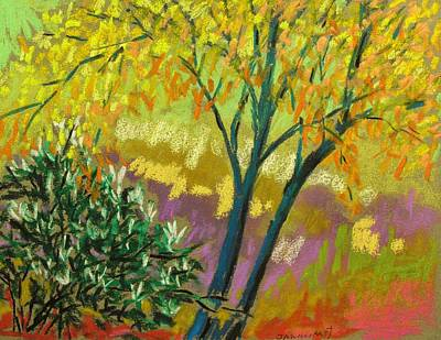 Autumn Landscape Drawing - Caught In The Corner by John Williams