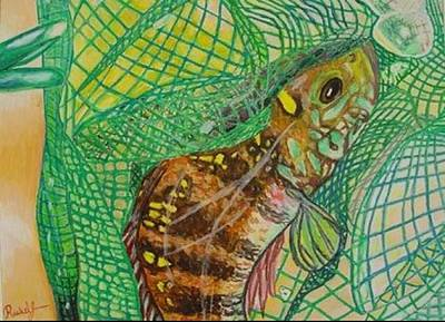 A Fish Out Of Water Pastel - Caught by Rachel  Jones