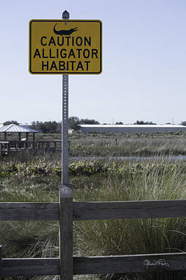 Photograph - Caution Alligator Habitat by Susan Molnar