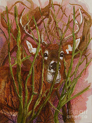 Mixed Media - Cautious by Bonnie Rodgers