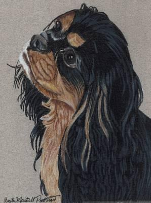 Cavalier King Charles Spaniel Art Print by Anita Putman