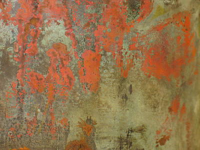 Photograph - Cave Painting by Mark C Ettinger