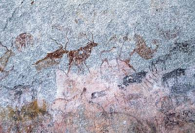 Zimbabwe Photograph - Cave Painting Showing Kudu (antelope) by Sheila Terry/science Photo Library