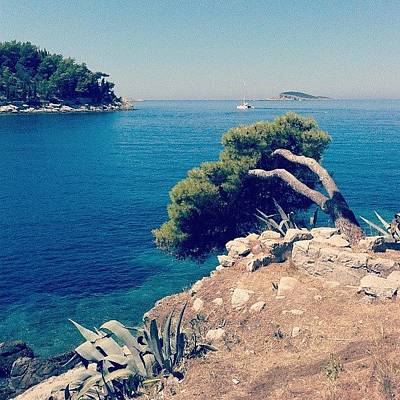Follow Photograph - Cavtat - Croazia by Emanuela Carratoni