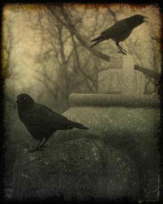 Two Crows Photograph - Cawing At The Gravyard by Gothicrow Images
