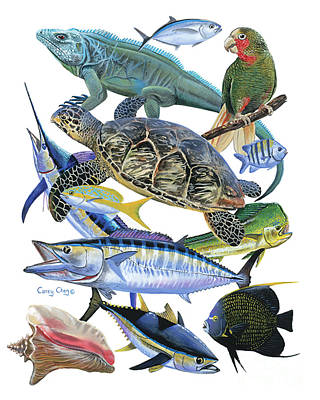Cayman Collage Art Print by Carey Chen
