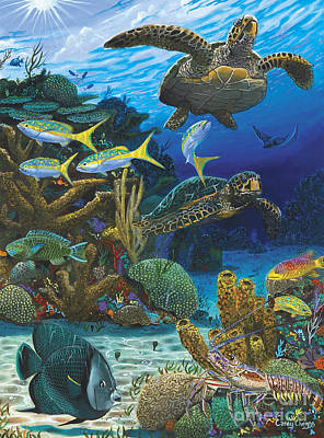 Coral Painting - Cayman Turtles Re0010 by Carey Chen