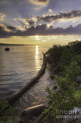 Cayuga Sunset II Art Print