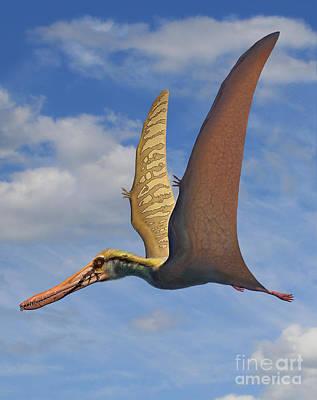 Bird Of Prey Digital Art - Cearadactylus Atrox, A Large Pterosaur by Sergey Krasovskiy