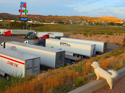 Photograph - Ceaser At Truck Stops Of America by James Welch
