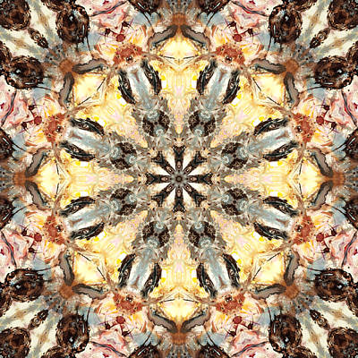 Haeckel Digital Art - Cecropia Sun 5 by Lisa Lipsett
