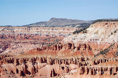 Cedar Breaks Up Close 3 Art Print by Debra Thompson