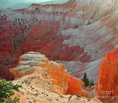 Cedar Breaks Utah Art Print