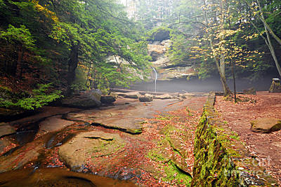 Photograph - Cedar Falls by Larry Ricker