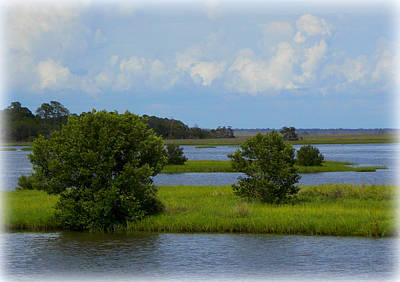 Photograph - Cedar Key Saltwater Flats by Sheri McLeroy