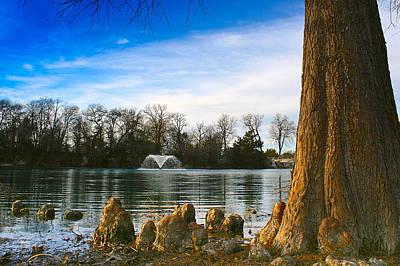 Photograph - Cedar Shade by Jeff Mize
