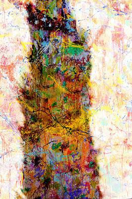 Photograph - Cedar Shadow by Ross Odom