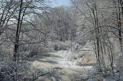 Photograph - Cedar Swamp Brook, Winter by John W. Bova