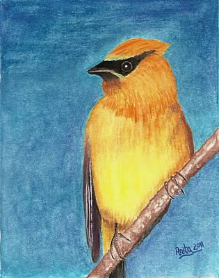 Cedar Waxwings Painting - Cedar Waxwing by Anik